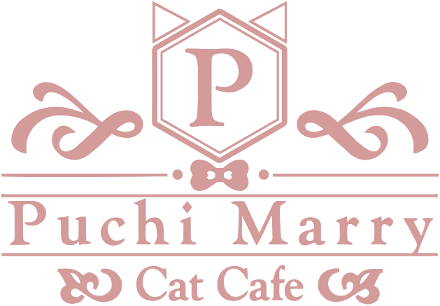 Puchi Marry