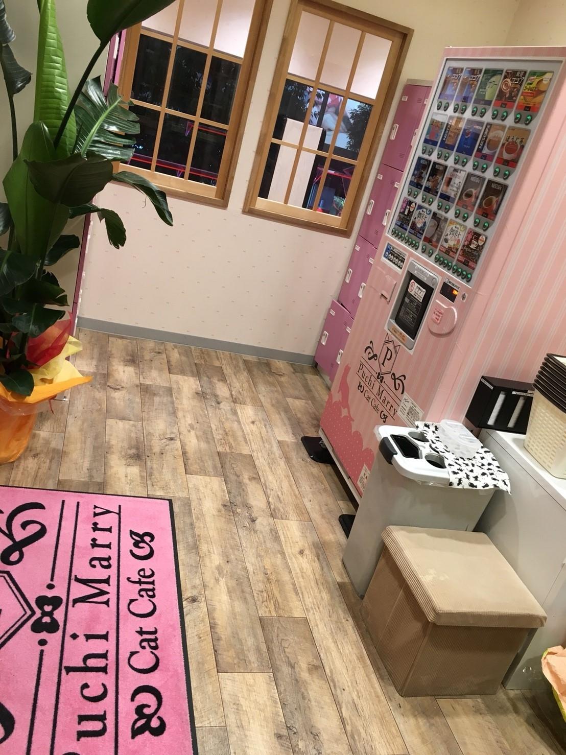 2021年4月28日OPEN!猫カフェPuchiMarryららぽーと上海金橋店✨