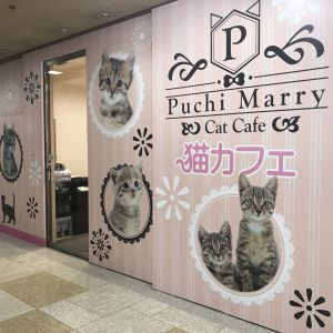 函館MEGAドン・キホーテ店