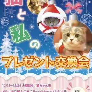 【猫カフェPuchiMarry】クリスマスイベントスタート!12/15から