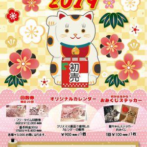 【本日より通常営業!】あけましておめでとうございます!猫カフェPuchiMarry