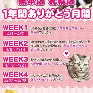 【開催中!】熊本店・札幌店1年間ありがとう月間☆