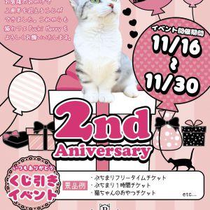 【11/16~11/30】猫カフェPuchiMarry2周年イベント開催!