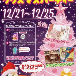 【12/21-12/25】ぷちまりクリスマスパーティ開催☆
