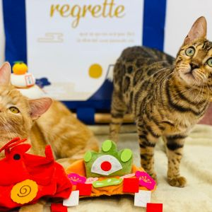 【猫カフェPuchiMarry】年末年始営業時間変更のお知らせ